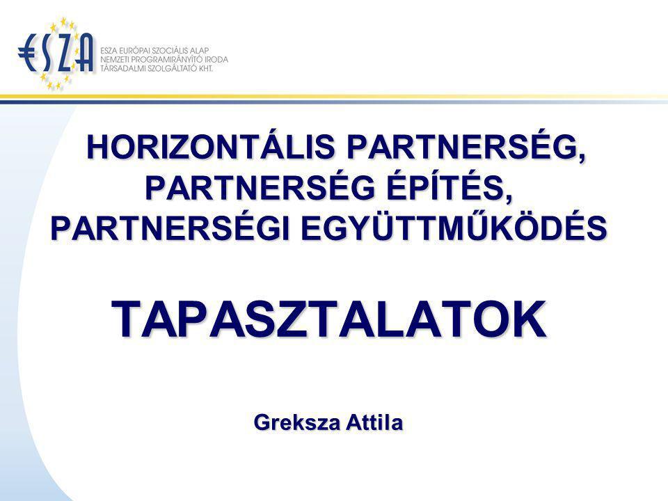 A HORIZONTÁLIS PARTNERSÉG (FOGALOM) AZONOS ÁGAZAT, JOGÁLLÁS, SZEKTOR ÉS MÉRET ALAPJÁN: a partnerségben együttműködő szervezetek különböző forrásaik hozzáadásával lendítik előre a közös ügyet, melynek világosan meghatározott célja és tárgya van.