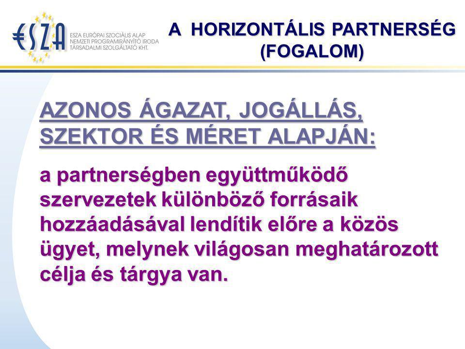 A HORIZONTÁLIS PARTNERSÉG (FOGALOM) AZONOS ÁGAZAT, JOGÁLLÁS, SZEKTOR ÉS MÉRET ALAPJÁN: a partnerségben együttműködő szervezetek különböző forrásaik ho