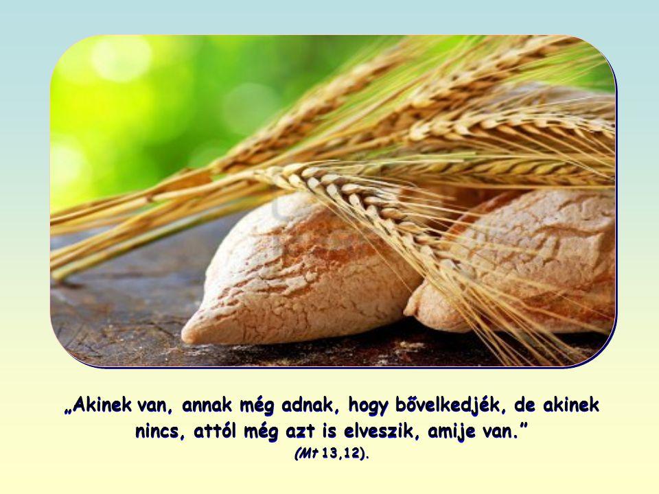 """""""Akinek van, annak még adnak, hogy bővelkedjék, de akinek nincs, attól még azt is elveszik, amije van. (Mt 13,12)."""