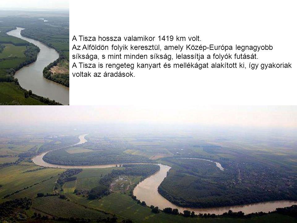 A Tisza hossza valamikor 1419 km volt. Az Alföldön folyik keresztül, amely Közép-Európa legnagyobb síksága, s mint minden síkság, lelassítja a folyók