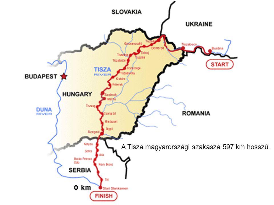 A Tisza magyarországi szakasza 597 km hosszú.