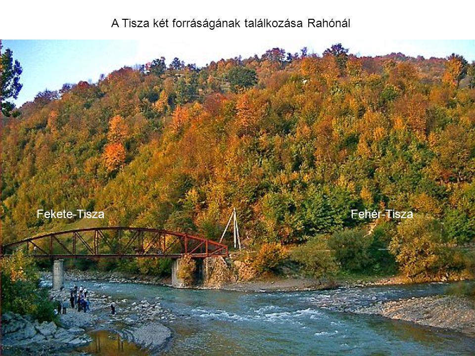 Fehér-TiszaFekete-Tisza A Tisza két forráságának találkozása Rahónál