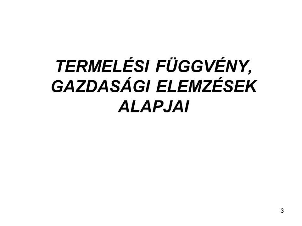 TERMELÉSI FÜGGVÉNY, GAZDASÁGI ELEMZÉSEK ALAPJAI 3