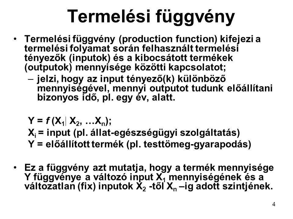 Termelési függvény Termelési függvény (production function) kifejezi a termelési folyamat során felhasznált termelési tényezők (inputok) és a kibocsát