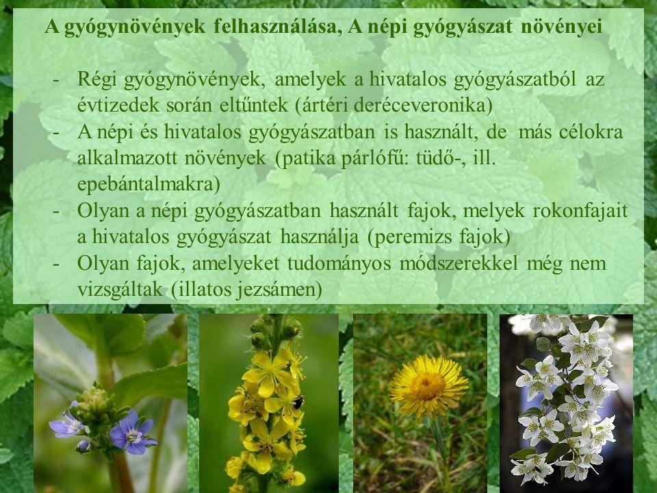 A gyógynövények felhasználása, A népi gyógyászat növényei -Régi gyógynövények, amelyek a hivatalos gyógyászatból az évtizedek során eltűntek (ártéri d