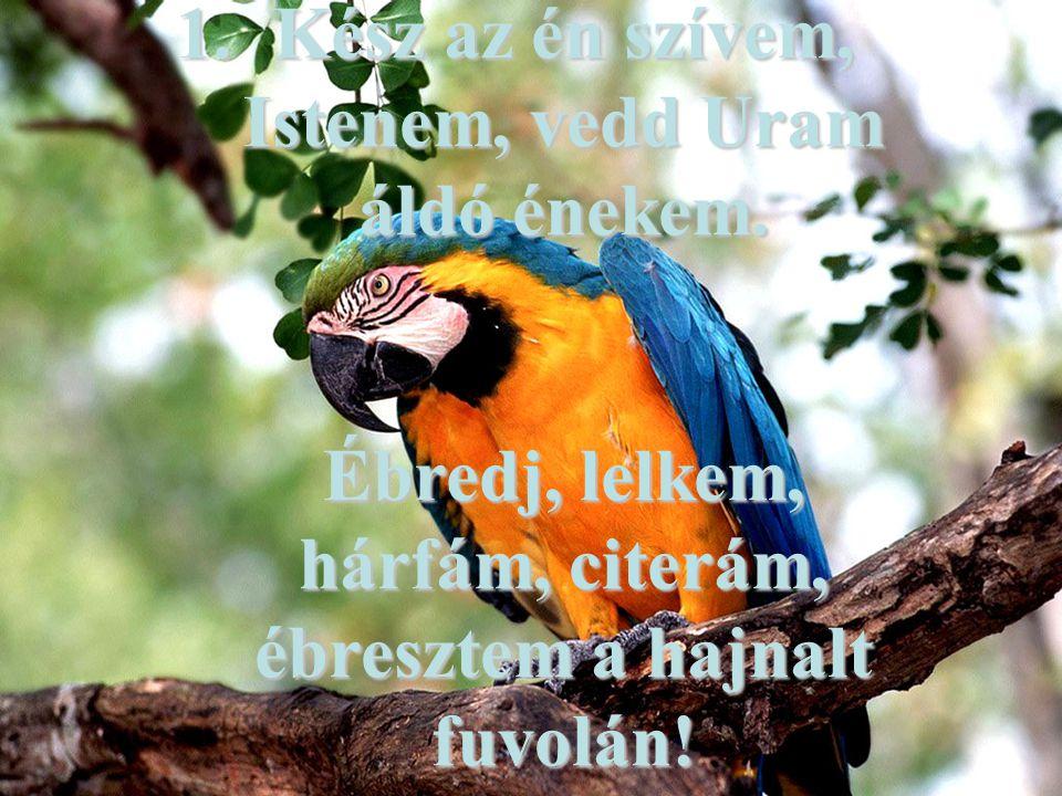 1.Kész az én szívem, Istenem, vedd Uram áldó énekem. Ébredj, lelkem, hárfám, citerám, ébresztem a hajnalt fuvolán!