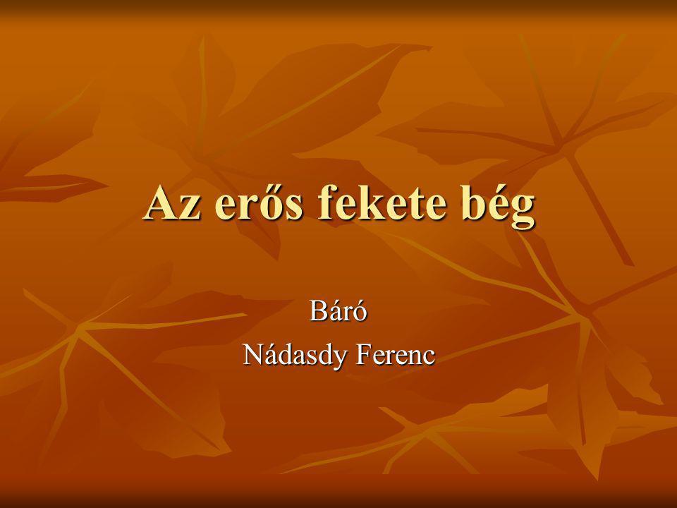 A törökök által erős fekete bégnek nevezett Nádasdy Ferenc 1555. október 6-án született Sárváron.