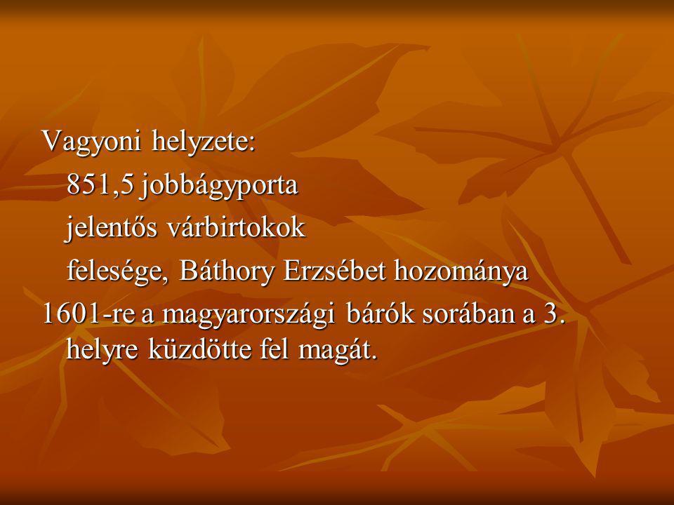 Vagyoni helyzete: 851,5 jobbágyporta jelentős várbirtokok felesége, Báthory Erzsébet hozománya 1601-re a magyarországi bárók sorában a 3. helyre küzdö