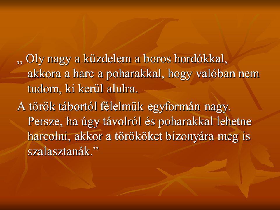 """"""" Oly nagy a küzdelem a boros hordókkal, akkora a harc a poharakkal, hogy valóban nem tudom, ki kerül alulra. A török tábortól félelmük egyformán nagy"""