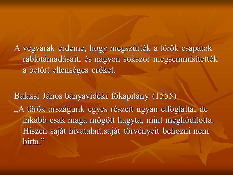 A végvárak érdeme, hogy megszűrték a török csapatok rablótámadásait, és nagyon sokszor megsemmisítették a betört ellenséges erőket. Balassi János bány