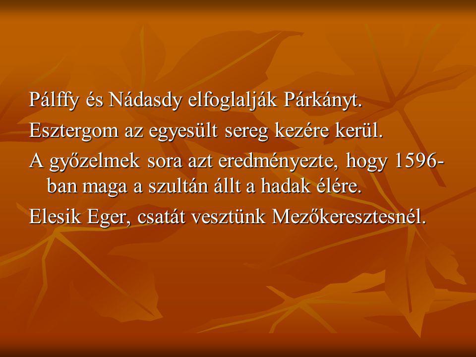 Pálffy és Nádasdy elfoglalják Párkányt. Esztergom az egyesült sereg kezére kerül. A győzelmek sora azt eredményezte, hogy 1596- ban maga a szultán áll