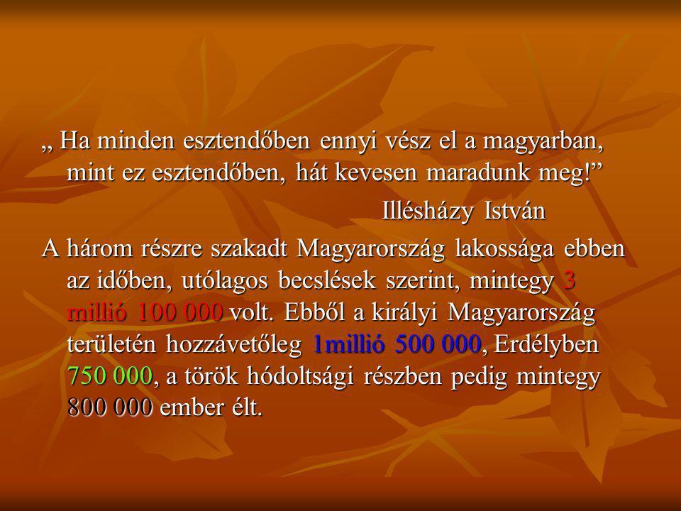 """"""" Ha minden esztendőben ennyi vész el a magyarban, mint ez esztendőben, hát kevesen maradunk meg!"""" Illésházy István A három részre szakadt Magyarorszá"""