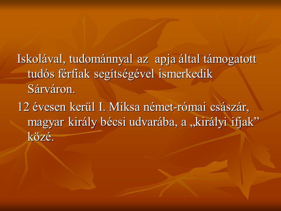 A végvárak érdeme, hogy megszűrték a török csapatok rablótámadásait, és nagyon sokszor megsemmisítették a betört ellenséges erőket.