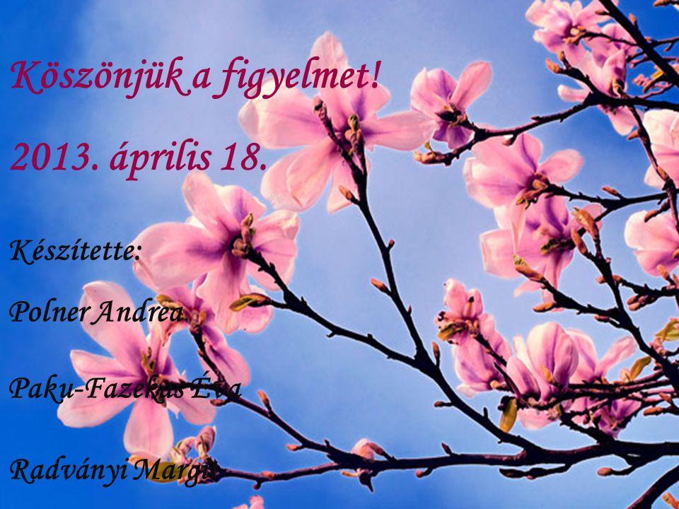 Köszönjük a figyelmet! 2013. április 18. Készítette: Polner Andrea Paku-Fazekas Éva Radványi Margit