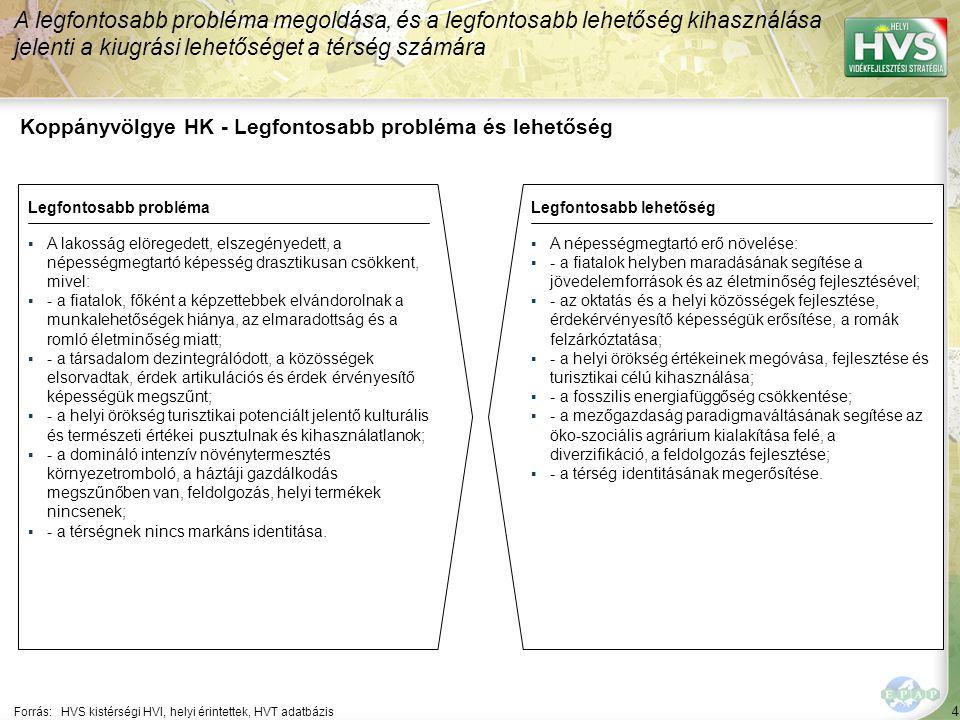 4 Koppányvölgye HK - Legfontosabb probléma és lehetőség A legfontosabb probléma megoldása, és a legfontosabb lehetőség kihasználása jelenti a kiugrási lehetőséget a térség számára Forrás:HVS kistérségi HVI, helyi érintettek, HVT adatbázis Legfontosabb problémaLegfontosabb lehetőség ▪A lakosság elöregedett, elszegényedett, a népességmegtartó képesség drasztikusan csökkent, mivel: ▪- a fiatalok, főként a képzettebbek elvándorolnak a munkalehetőségek hiánya, az elmaradottság és a romló életminőség miatt; ▪- a társadalom dezintegrálódott, a közösségek elsorvadtak, érdek artikulációs és érdek érvényesítő képességük megszűnt; ▪- a helyi örökség turisztikai potenciált jelentő kulturális és természeti értékei pusztulnak és kihasználatlanok; ▪- a domináló intenzív növénytermesztés környezetromboló, a háztáji gazdálkodás megszűnőben van, feldolgozás, helyi termékek nincsenek; ▪- a térségnek nincs markáns identitása.