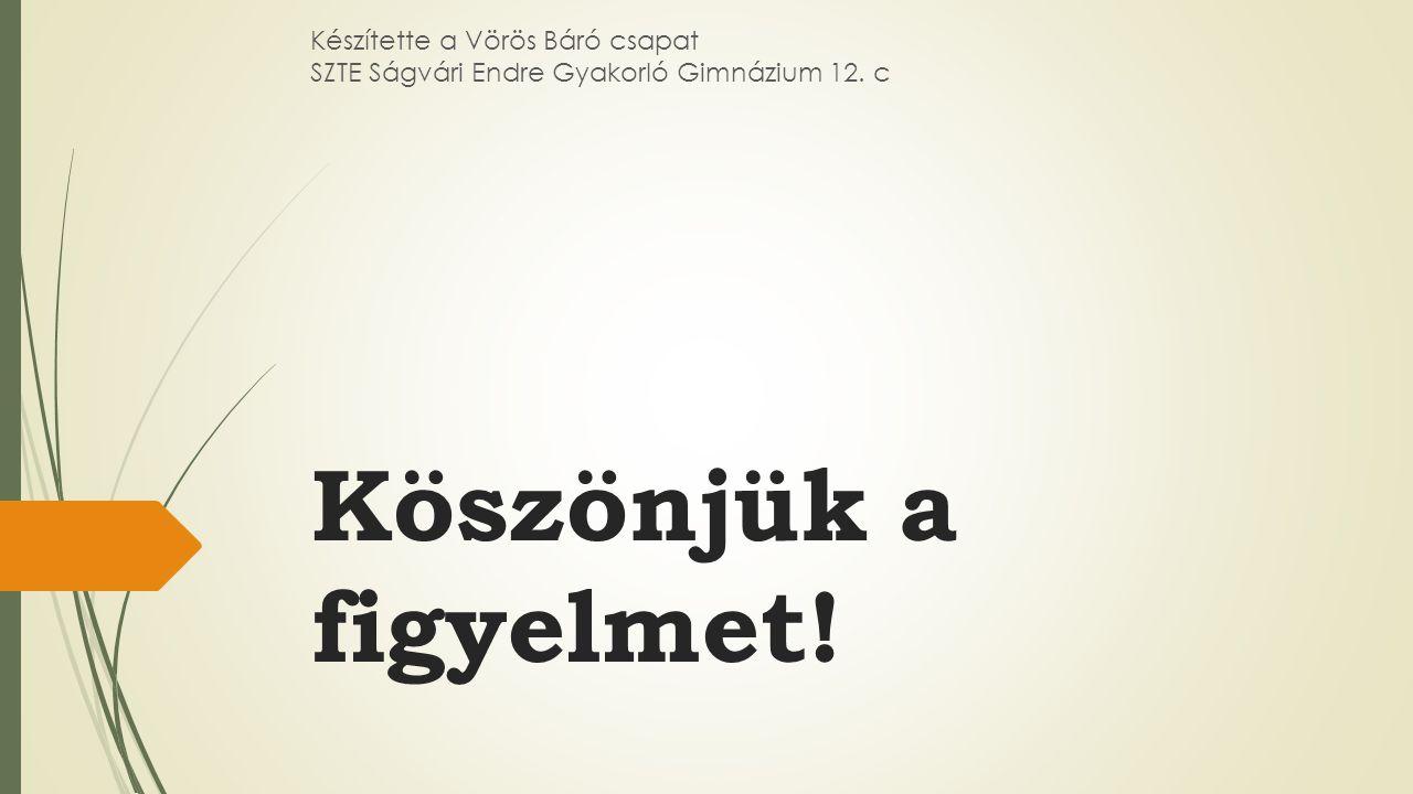 Köszönjük a figyelmet! Készítette a Vörös Báró csapat SZTE Ságvári Endre Gyakorló Gimnázium 12. c
