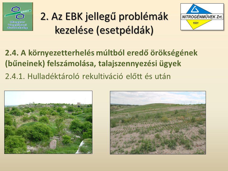 2. Az EBK jellegű problémák kezelése (esetpéldák) 2.4.