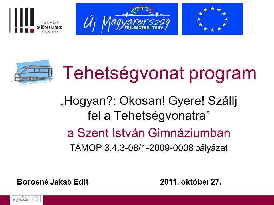 """Tehetségvonat program """"Hogyan?: Okosan! Gyere! Szállj fel a Tehetségvonatra"""" a Szent István Gimnáziumban TÁMOP 3.4.3-08/1-2009-0008 pályázat Borosné J"""