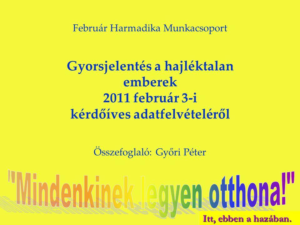 Február Harmadika Munkacsoport Gyorsjelentés a hajléktalan emberek 2011 február 3-i kérdőíves adatfelvételéről Összefoglaló: Győri Péter Itt, ebben a