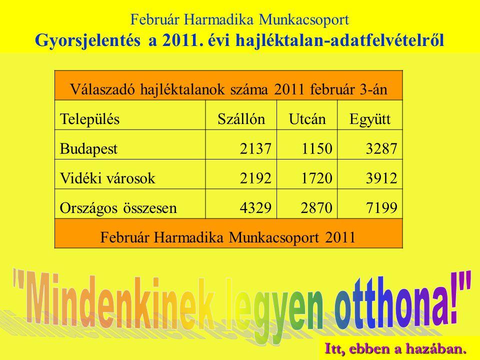 Február Harmadika Munkacsoport Gyorsjelentés a 2011. évi hajléktalan-adatfelvételről Válaszadó hajléktalanok száma 2011 február 3-án TelepülésSzállónU