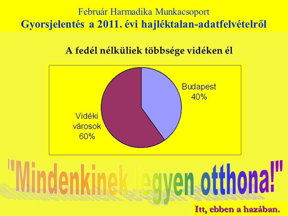 Február Harmadika Munkacsoport Gyorsjelentés a 2010. évi hajléktalan-adatfelvételről A fedél nélküliek többsége vidéken él Február Harmadika Munkacsop