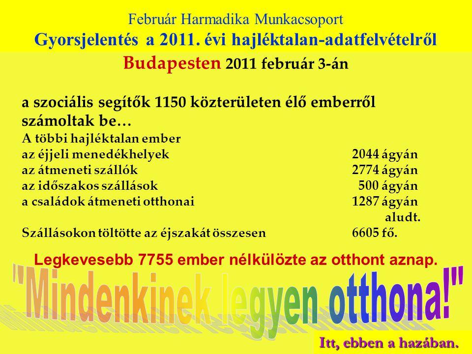 Budapesten 2011 február 3-án a szociális segítők 1150 közterületen élő emberről számoltak be… A többi hajléktalan ember az éjjeli menedékhelyek 2044 ágyán az átmeneti szállók 2774 ágyán az időszakos szállások 500 ágyán a családok átmeneti otthonai 1287 ágyán aludt.