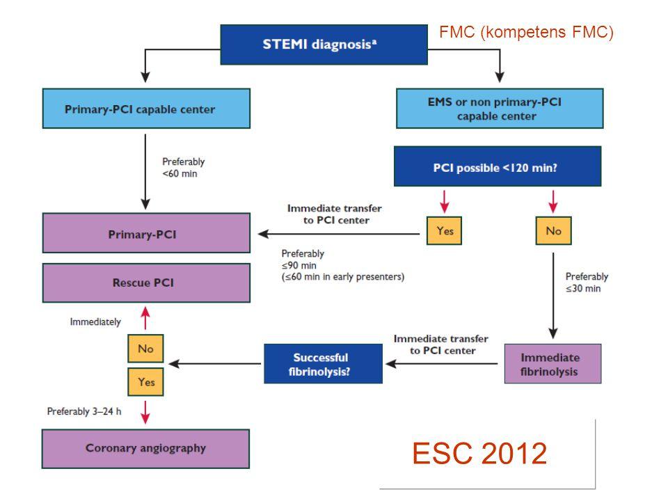 FMC (kompetens FMC) ESC 2012