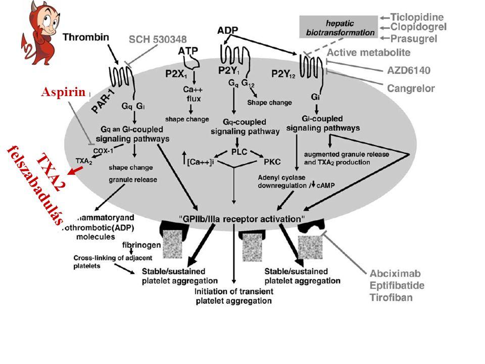 Aspirin TXA2 felszabadulás