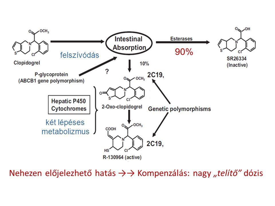 """Nehezen előjelezhető hatás →→ Kompenzálás: nagy """"telítő"""" dózis felszívódás két lépéses metabolizmus 90%"""