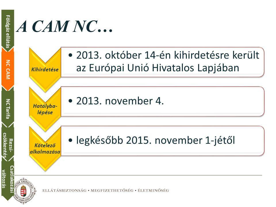A CAM NC… Kihirdetése 2013.
