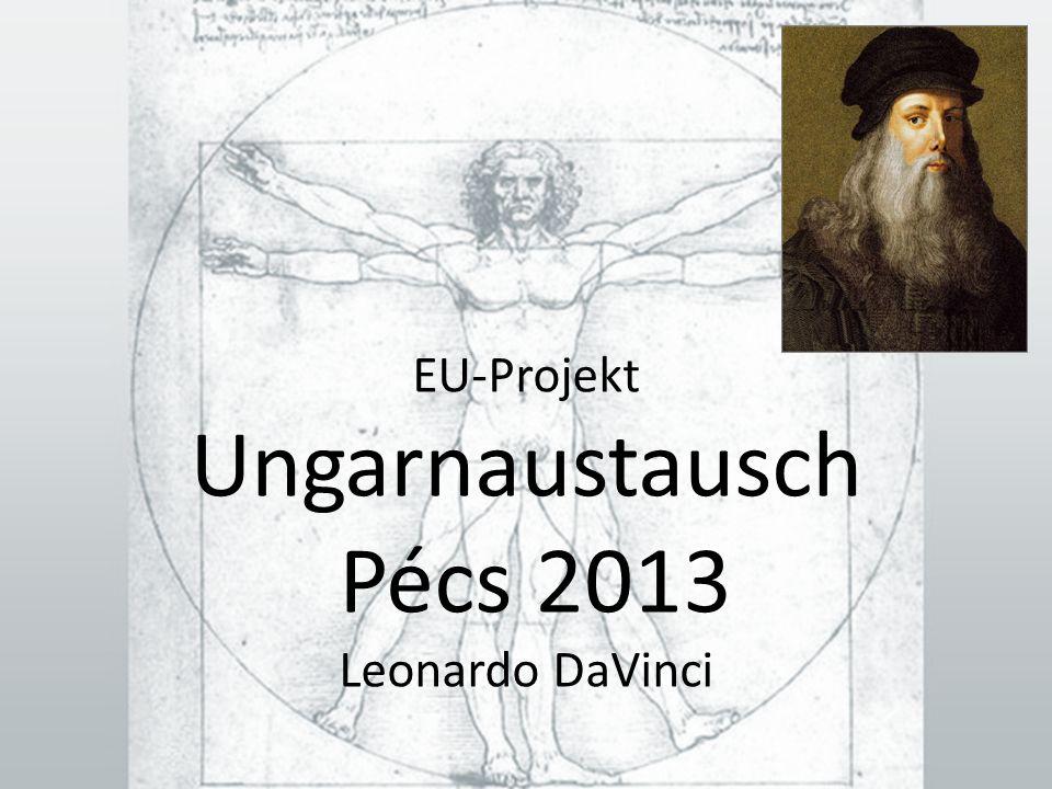 EU-Projekt Ungarnaustausch Pécs 2013 Leonardo DaVinci