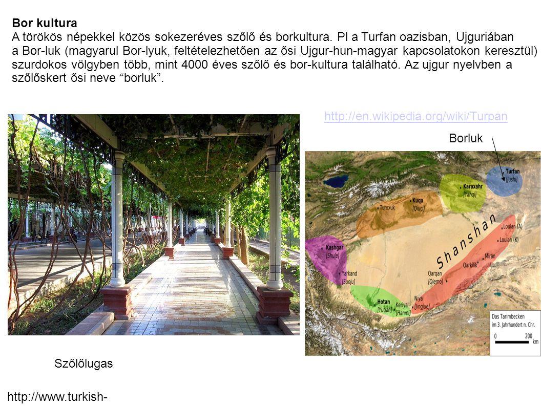 Bor kultura A törökös népekkel közös sokezeréves szőlő és borkultura. Pl a Turfan oazisban, Ujguriában a Bor-luk (magyarul Bor-lyuk, feltételezhetően