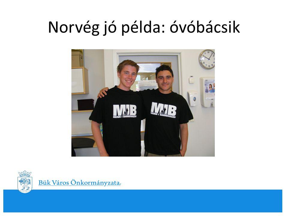 Norvég jó példa: óvóbácsik