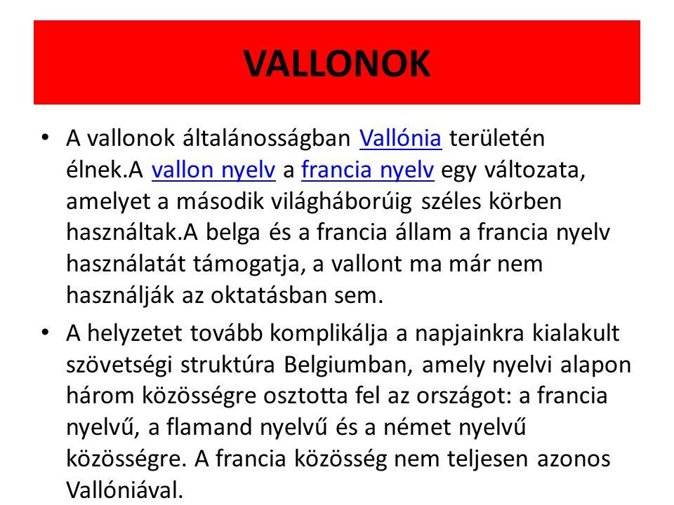 VALLONOK A vallonok általánosságban Vallónia területén élnek.A vallon nyelv a francia nyelv egy változata, amelyet a második világháborúig széles körb