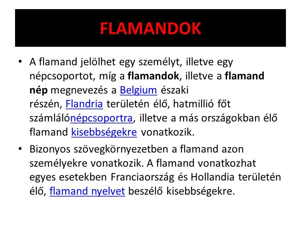 FLAMANDOK A flamand jelölhet egy személyt, illetve egy népcsoportot, míg a flamandok, illetve a flamand nép megnevezés a Belgium északi részén, Flandr