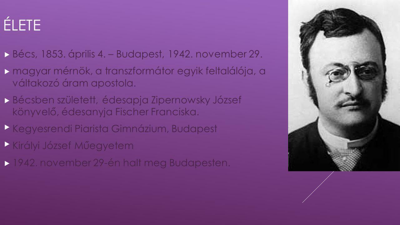 ÉLETE  Bécs, 1853. április 4. – Budapest, 1942. november 29.  magyar mérnök, a transzformátor egyik feltalálója, a váltakozó áram apostola.  Bécsbe