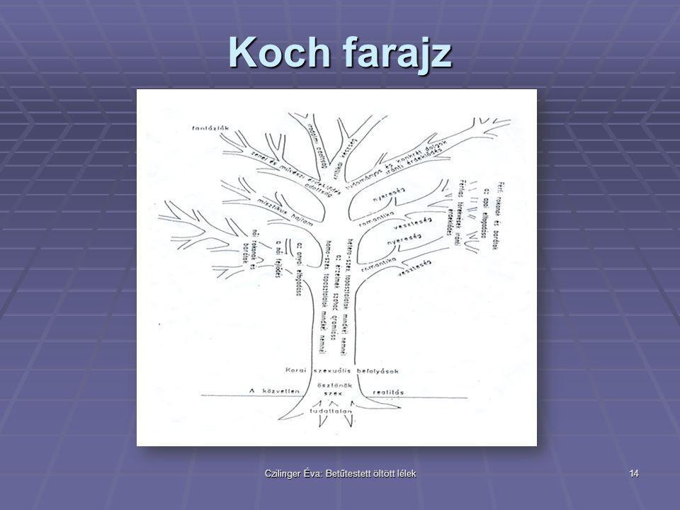 Czilinger Éva: Betűtestett öltött lélek14 Koch farajz