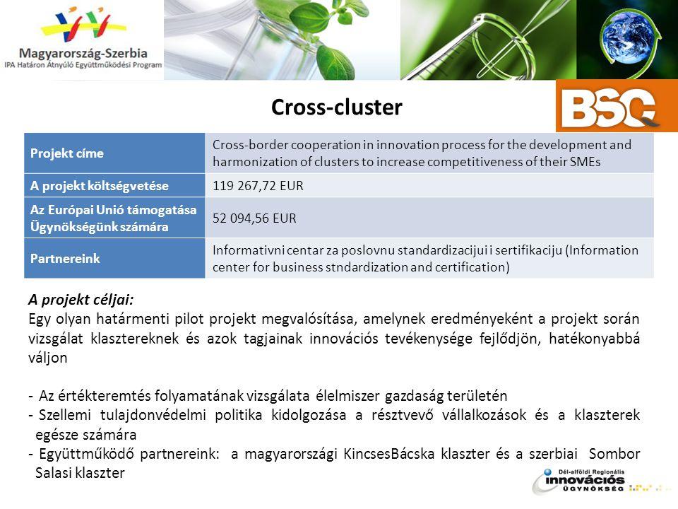 Cross-cluster A projekt céljai: Egy olyan határmenti pilot projekt megvalósítása, amelynek eredményeként a projekt során vizsgálat klasztereknek és az