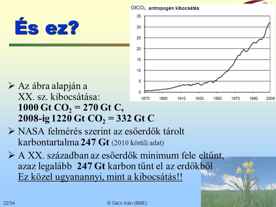 © Gács Iván (BME)21/54 Erdőterület változás 1990-2000  Afrika-8%  Kongó-4%  Szudán-14%  Ázsia-1%  Indonézia-12%  Európa+1%  Dél-Amerika-2%  Br