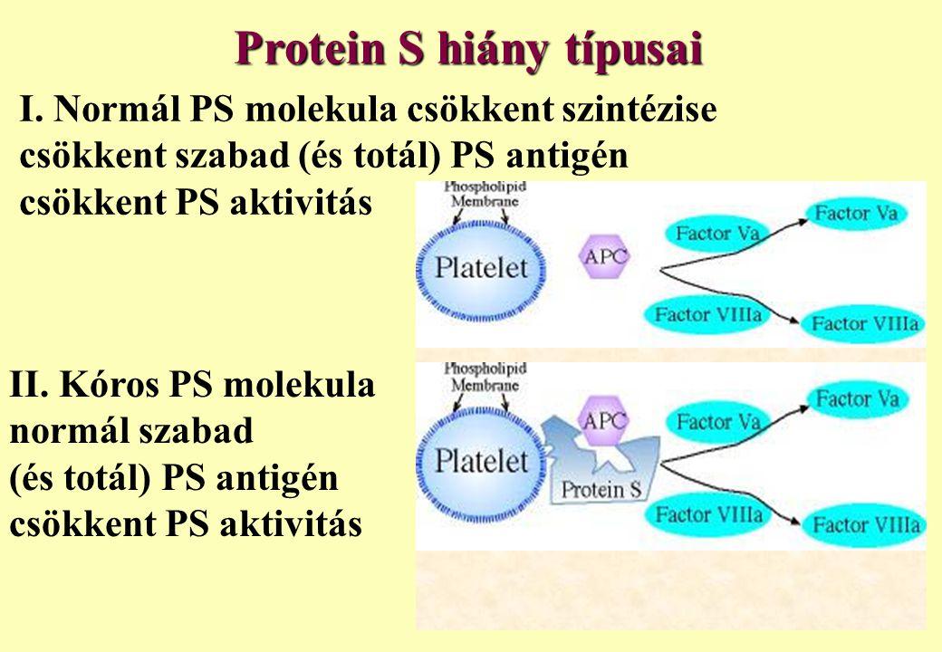 Protein S hiány típusai I. Normál PS molekula csökkent szintézise csökkent szabad (és totál) PS antigén csökkent PS aktivitás II. Kóros PS molekula no