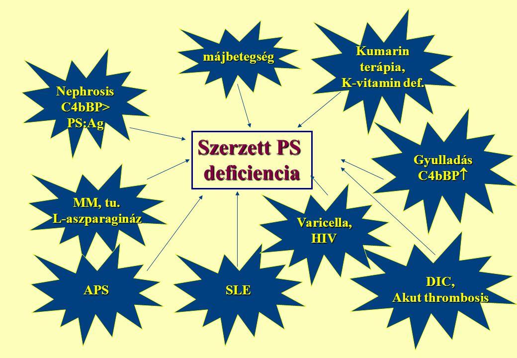 Gyulladás C4bBP  Szerzett PS deficiencia SLE MM, tu. L-aszparagináz Kumarinterápia, K-vitamin def. májbetegség DIC, Akut thrombosis APS Varicella,HIV