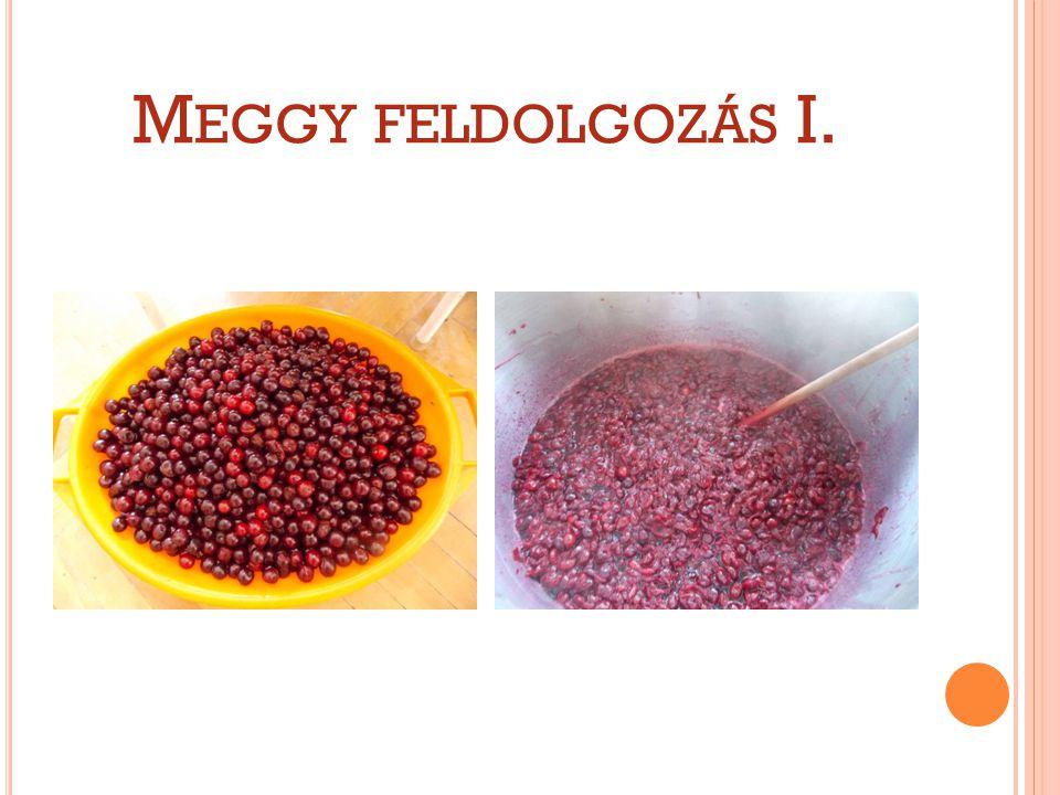 M EGGY FELDOLGOZÁS I.