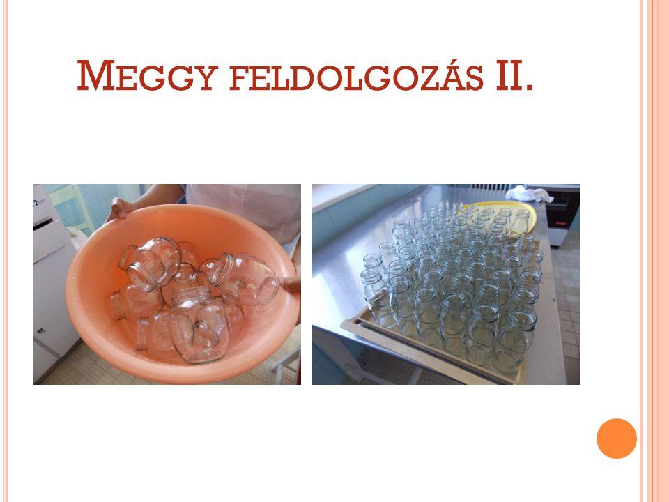 M EGGY FELDOLGOZÁS II.