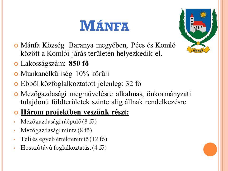 Mánfa Község Baranya megyében, Pécs és Komló között a Komlói járás területén helyezkedik el. Lakosságszám: 850 fő Munkanélküliség 10% körüli Ebből köz