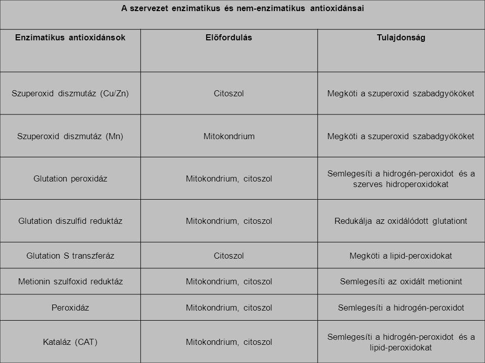 Nem enzimatikus antioxidánsok ElőfordulásTulajdonság A-vitamin és karotinoidokSejtmembránok Reaktív oxigéngyökfogók, általában zsíroldhatóak C-vitaminA sejtek vizes fázisában Vízoldható, az E-vitamin hatásfokát növelő antioxidáns E-vitaminSejtmembrán HúgysavA purin anyagcsere melléktermékeHidroxilgyökfogó Alfa-liponsavA sejtek vizes és hidrofób fázisában Újraképezheti a C-vitamint, hatása hasonló a glutationéhoz Polifenolok (ellagsav)Sejtmembrán, mitokondriumÚjraképezheti a C- és az E-vitamint Bilirubin A vörösvértestek lebomlása során képződő vegyület Sejten kívüli antioxidáns Ubikinonok (CoQ10)MitokondriumErős antioxidáns Transzferrin, ferritin, laktoferrinVérszérum A szabadgyök-képződést felgyorsító fémionokat kelátképzéssel hatástalanítja Nitrogén-monoxidVérszérumGátolja a lipid-peroxid képződést