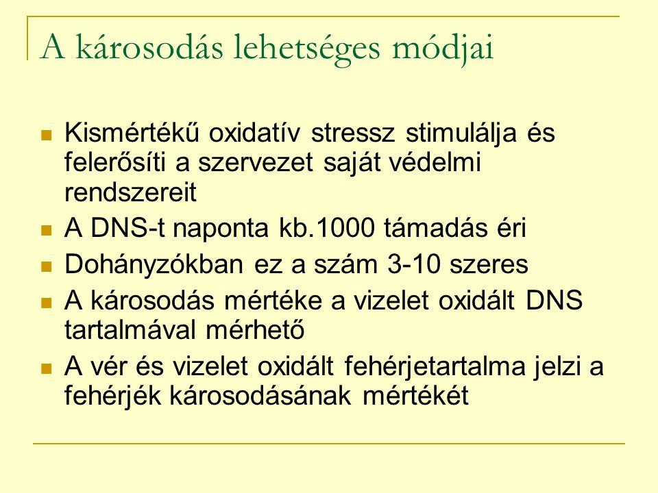 A károsodás lehetséges módjai Kismértékű oxidatív stressz stimulálja és felerősíti a szervezet saját védelmi rendszereit A DNS-t naponta kb.1000 támad