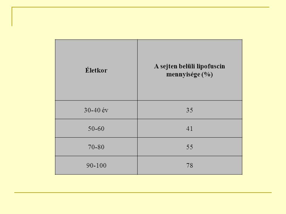 Életkor A sejten belüli lipofuscin mennyisége (%) 30-40 év35 50-6041 70-8055 90-10078