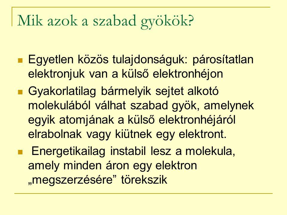Mik azok a szabad gyökök? Egyetlen közös tulajdonságuk: párosítatlan elektronjuk van a külső elektronhéjon Gyakorlatilag bármelyik sejtet alkotó molek