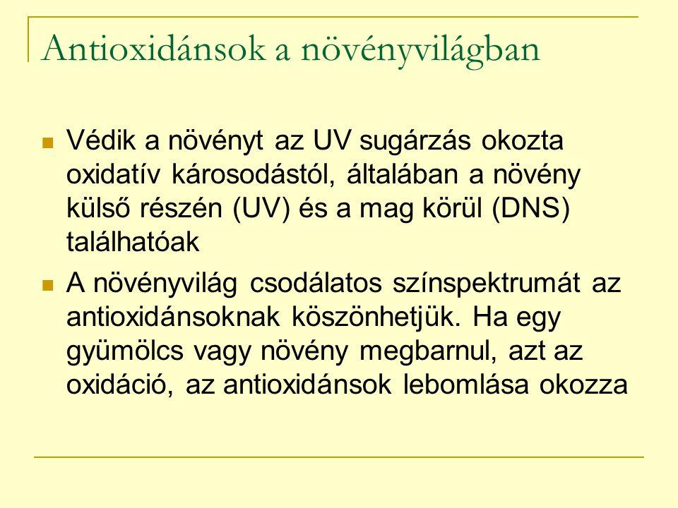 Antioxidánsok a növényvilágban Védik a növényt az UV sugárzás okozta oxidatív károsodástól, általában a növény külső részén (UV) és a mag körül (DNS)