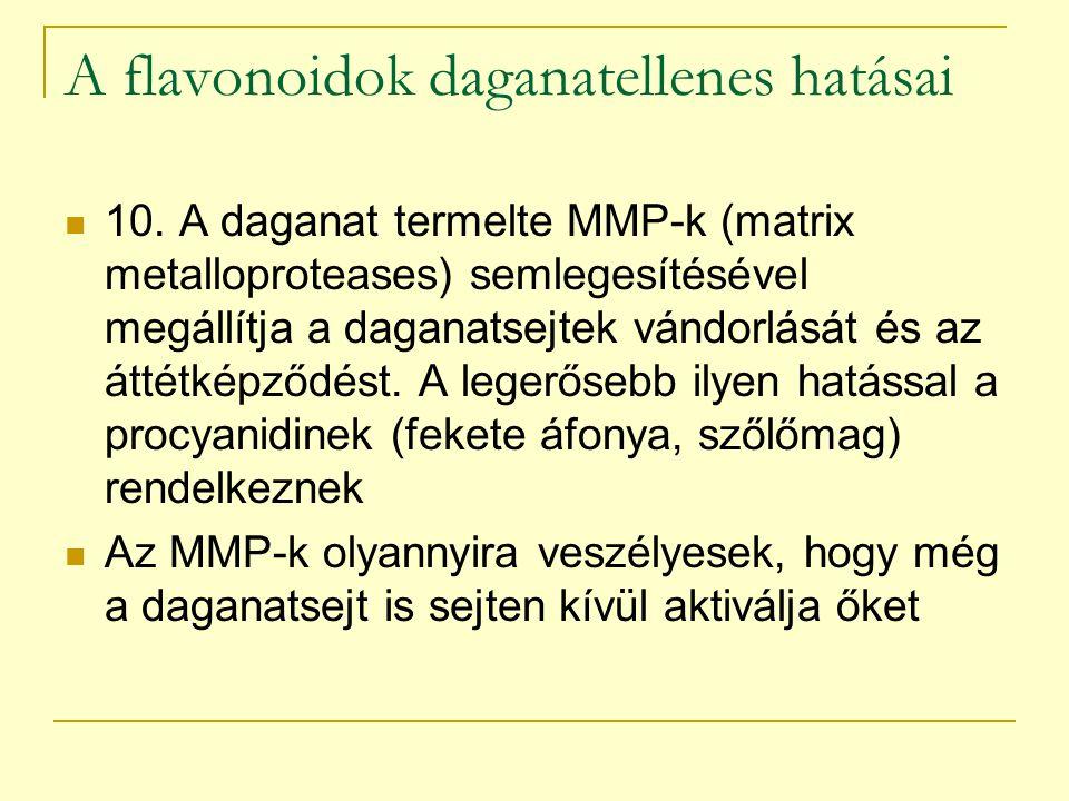 A flavonoidok daganatellenes hatásai 10. A daganat termelte MMP-k (matrix metalloproteases) semlegesítésével megállítja a daganatsejtek vándorlását és